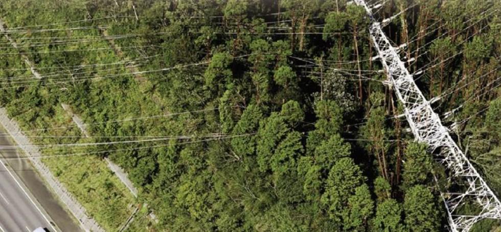 台風で電線が倒れる