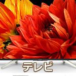 テレビバナー