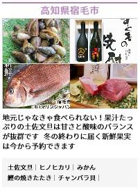 高知県宿が町