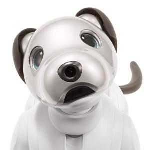 ロボット犬